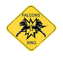 Falcons Xing Photographic Print