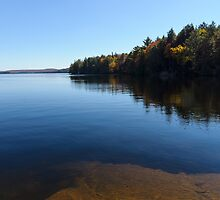 A Blue Autumn Afternoon - Algonquin Lake Serenity by Georgia Mizuleva