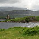 Ardureck Castle, Loch Assynt, Sutherland, North West Highland, Scotland by fotosic