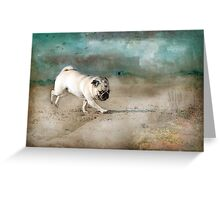 When Pugs Fly Greeting Card
