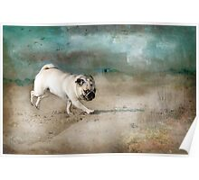 When Pugs Fly Poster