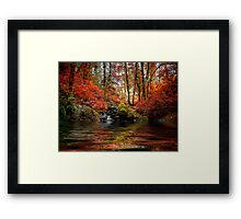 Just Drem Along ~ Fall Colors ~ Framed Print