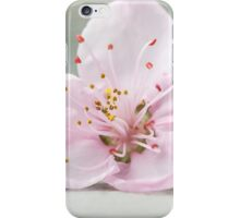 Peace begins with a smile iPhone Case/Skin