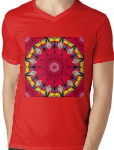 Feather Mandala10 Mens V-Neck T-Shirt