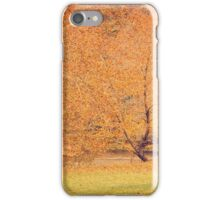 Autumn Landscape -- Trees By The River iPhone Case/Skin