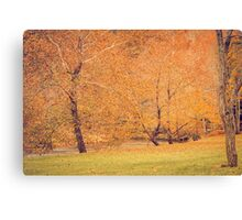 Autumn Landscape -- Trees By The River Canvas Print