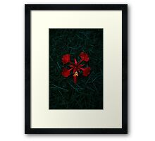 Heart of Mine Framed Print