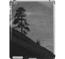 Fleshwick triangle - photography iPad Case/Skin