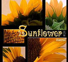 Sunflower Macro Collage Scrapbook Page by Sandra Foster