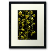 Look Into Us Framed Print