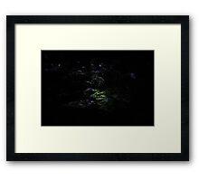 The Light of Love Enlightens My Way Framed Print