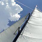 Sailing by PicsbyJody
