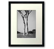 El Rancho - Guaíra, Brazil Framed Print
