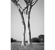 El Rancho - Guaíra, Brazil Photographic Print