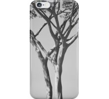 El Rancho - Guaíra, Brazil iPhone Case/Skin