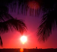 Dampier Sunset by Penny Smith