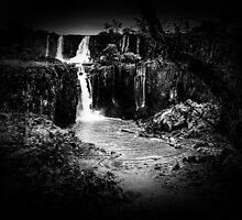 Iguaza Falls - No. 10 - monochrome by photograham