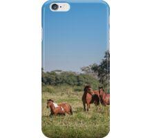 Wild Horses - El Rancho, Brazil iPhone Case/Skin