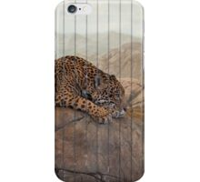 Lincoln Park Zoo - Chicago, IL iPhone Case/Skin