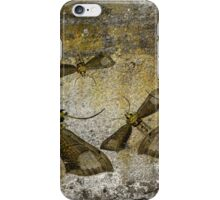 Burnished Brass Moth iPhone Case/Skin