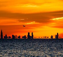 Flying Over the Chicago Skyline at Sunset by Robert Kelch, M.D.