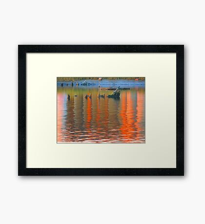 The Colors of Fall      (3955142610VA) Framed Print