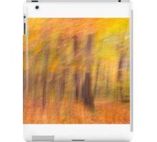 Autumn Spirits iPad Case/Skin