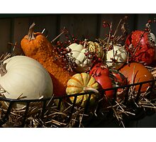 Orange in the Fall Photographic Print