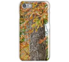 tree in autumn iPhone Case/Skin