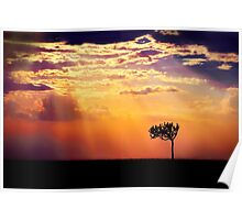 Sunset Over Masai Mara IV [Print & iPad Case] Poster