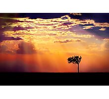 Sunset Over Masai Mara IV [Print & iPad Case] Photographic Print