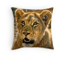 Eco-Tourism: A Once in a Lifetime Experience Throw Pillow