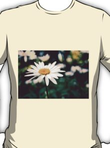 Afternoon Daisy T-Shirt