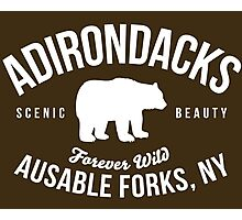 Cool Adirondacks Ausable Forks New York Scenic Beauty Bear Nature T-Shirt Photographic Print