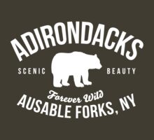 Cool Adirondacks Ausable Forks New York Scenic Beauty Bear Nature T-Shirt by Albany Retro