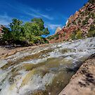 Zion Runoff by barkeypf