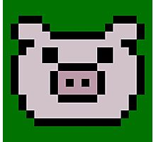 Pig (8-bit / 16-bit / Pixelated) Photographic Print