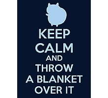 Keep Calm and Throw a Blanket Over It Photographic Print