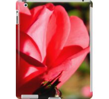 Fall Walk in my Neighborhood -Fall Roses iPad Case/Skin