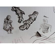 sketch book ginger body Photographic Print