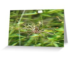 It Floats! Spider Greeting Card