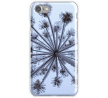A tour in the Fire(ice)work iPhone Case/Skin