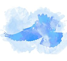 The flight of a blue dove Photographic Print