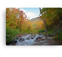 Early glimpse of Autumn Canvas Print