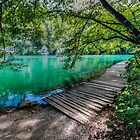 Aqua Blue Lakes of Plitvice by pixog