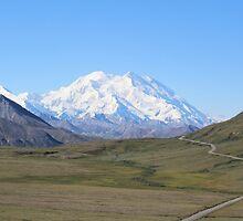 Denali (Mount McKinley) by Kirsten Thompson