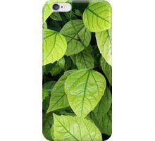 Green leaves iPhone Case/Skin