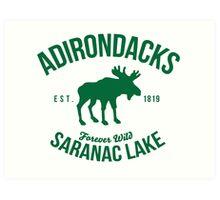 Cool Adirondacks Saranac Lake New York Scenic Beauty Moose Nature T-Shirt Art Print