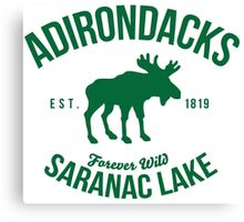 Cool Adirondacks Saranac Lake New York Scenic Beauty Moose Nature T-Shirt Canvas Print
