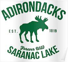 Cool Adirondacks Saranac Lake New York Scenic Beauty Moose Nature T-Shirt Poster